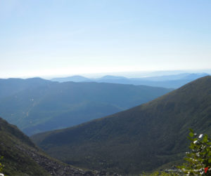 The Appalachian Trail with Whoopie Cat